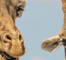 Giraffe Pals Sticker