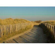 Path through the dunes Photographic Print
