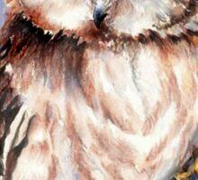 Watercolor Cute Owl Bird Sticker