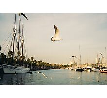 Barcelona Port and Seagulls Photographic Print