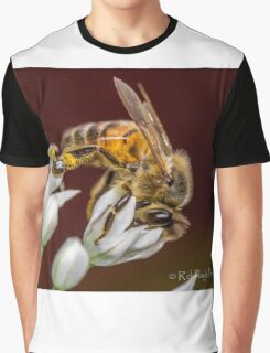 Beewonder Graphic T-Shirt