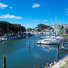 Milford Marina - a safe haven......! by Roy  Massicks