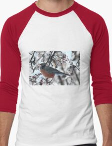 Red robin in the snowy tree Men's Baseball ¾ T-Shirt