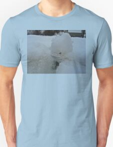 SNOW BOUND LITTLE FROG  Unisex T-Shirt