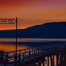 Fleischmann Pier  by JHRphotoART