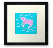 Unicorn Anatomy Framed Print