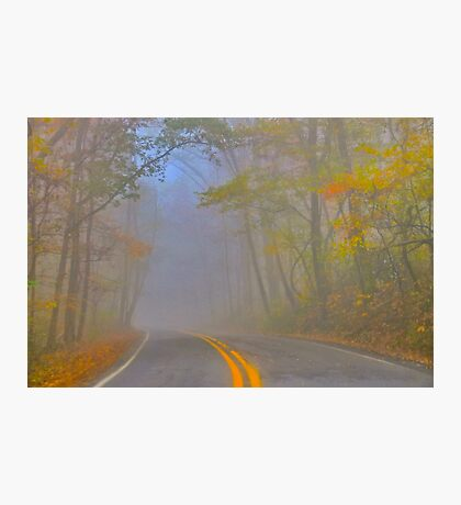 Foggy Morning on the Arkansas Scenic Pig Trail Bypass Photographic Print
