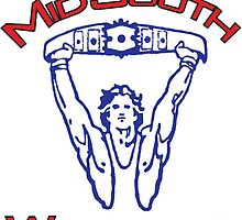 Mid-South Championship Wrestling by evilzoneonline