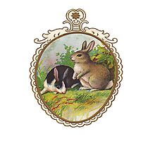 Vintage Easter Bunnies Photographic Print