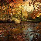 Autumn days  by MarianBendeth