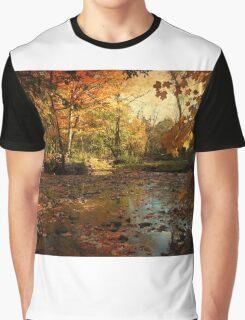 Autumn days  Graphic T-Shirt