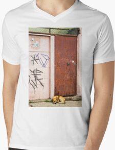 The Dog's Door Mens V-Neck T-Shirt