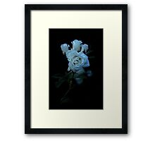 purity amidst sin. Framed Print