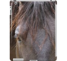Hello, Beautiful ~ Horse Portrait iPad Case/Skin