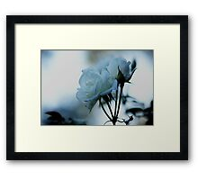explore and create Framed Print