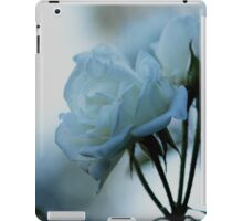 explore and create iPad Case/Skin