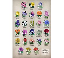 The Floral Alphabet Photographic Print