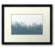 winter things Framed Print