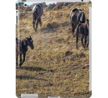 Garcia Herding His Band- Pryor Mustangs iPad Case/Skin