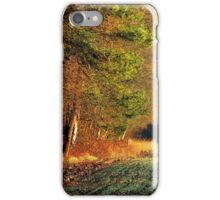 The first kiss of the morning sun iPhone Case/Skin