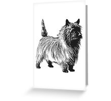 my pet Greeting Card