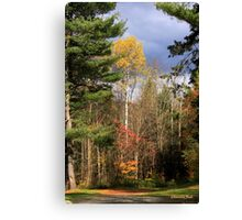 Country Road ~ Take Me Home Canvas Print