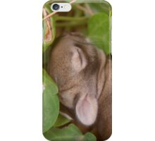 Sleepy Bunny iPhone Case/Skin