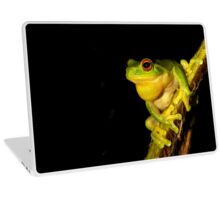 Red Eyed Tree Frog - Litoria chloris Laptop Skin