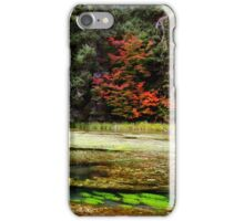 autumn spring iPhone Case/Skin