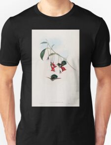 A monograph of the Trochilidæ or family of humming birds by John Gould 1861 V4 074 T-Shirt