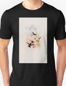 A monograph of the Trochilidæ or family of humming birds by John Gould 1861 V5 304 T-Shirt
