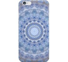 Opulence and Decay in Blue  iPhone Case/Skin