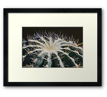 Top of Cactus Framed Print