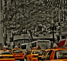 Yellow Cabs flow on 5th Ave Sticker
