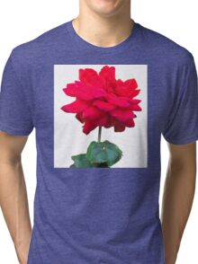 Single red rose flower, isolated on white background Tri-blend T-Shirt