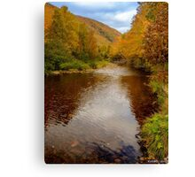 Cabot Trail Autumn 2015 Canvas Print