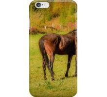 Horses in Mabou iPhone Case/Skin