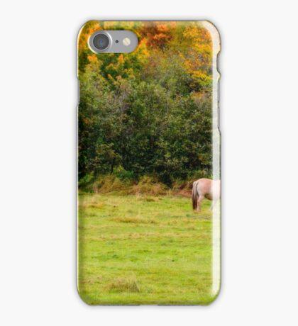 Horses Enjoying a Beautiful Autumn Day iPhone Case/Skin