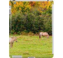 Horses Enjoying a Beautiful Autumn Day iPad Case/Skin