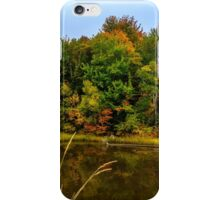 Autumn in Mabou iPhone Case/Skin