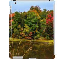 Autumn in Mabou iPad Case/Skin