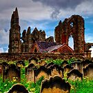 The Abbey from the Graveyard by Tom Gomez