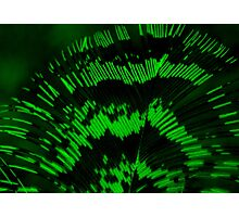 Luminous feather in green  Photographic Print