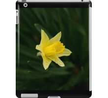 Narcissus Daffodil and leaves iPad Case/Skin