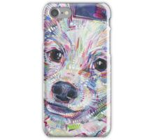 Papillon painting - 2016 iPhone Case/Skin