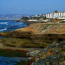 Living On Sunset Cliffs ~ California ~ USA (read message) by Marie Sharp
