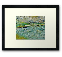 Sauble Beach Framed Print