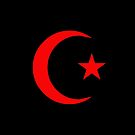 Star and Crescent (RED) by Omar Dakhane