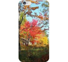 Autumn Forest Killarney Provincial Park iPhone Case/Skin