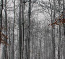 Winter Storm In The Bush Sticker